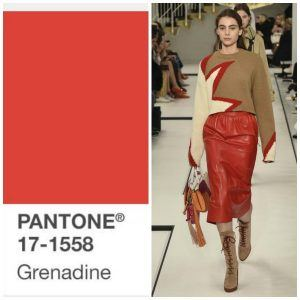 grenadine-winter2018