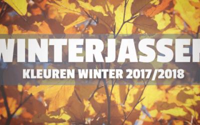 Trend Winterjassen 2017-2018 kleuren